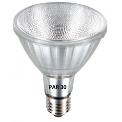 BULB LED 13W OUTDOOR FLD
